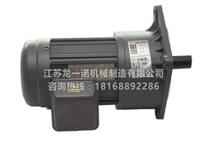 齿轮电机马达TS4603N
